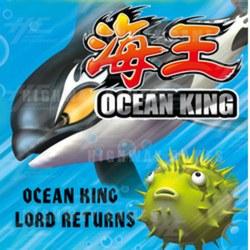 Ocean King English Version Software Upgrade CF Card